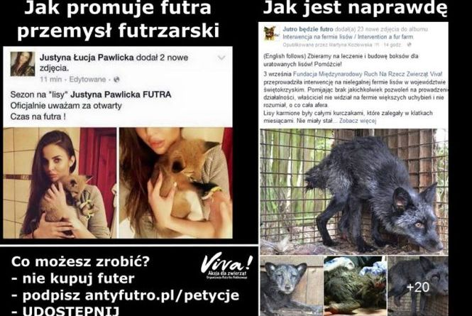 Futro Justyna Pawlicka