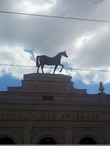 Tuwim Łódź
