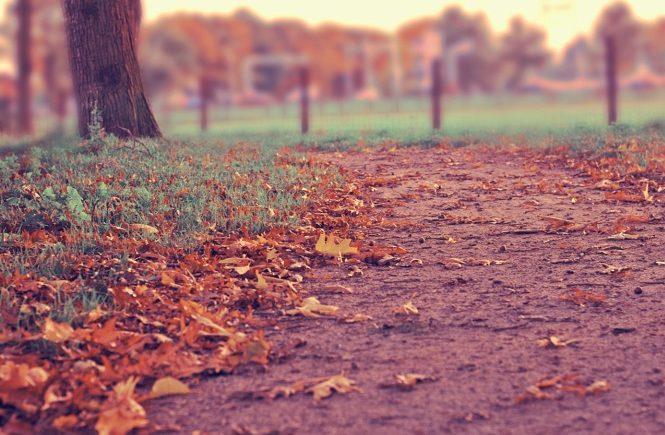 Jesień wydarzenia kulturalne