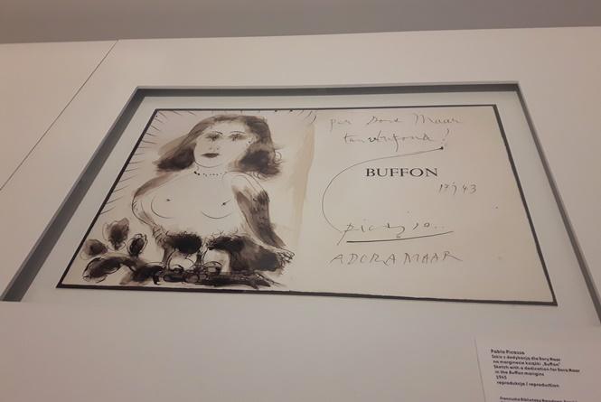 Syrena Picasso