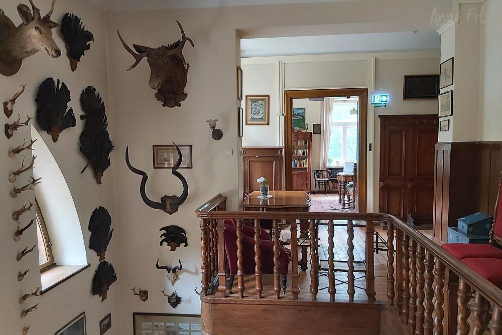 Stawisko - Muzeum w Podkowie Leśnej