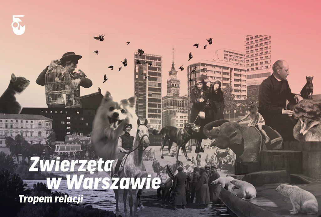 Wystawa Zwierzęta w Warszawie. Tropem relacji